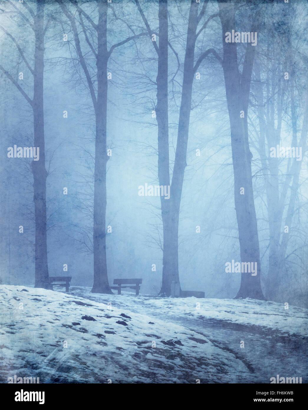 L'Allemagne, dans la forêt d'hiver banc vide Photo Stock