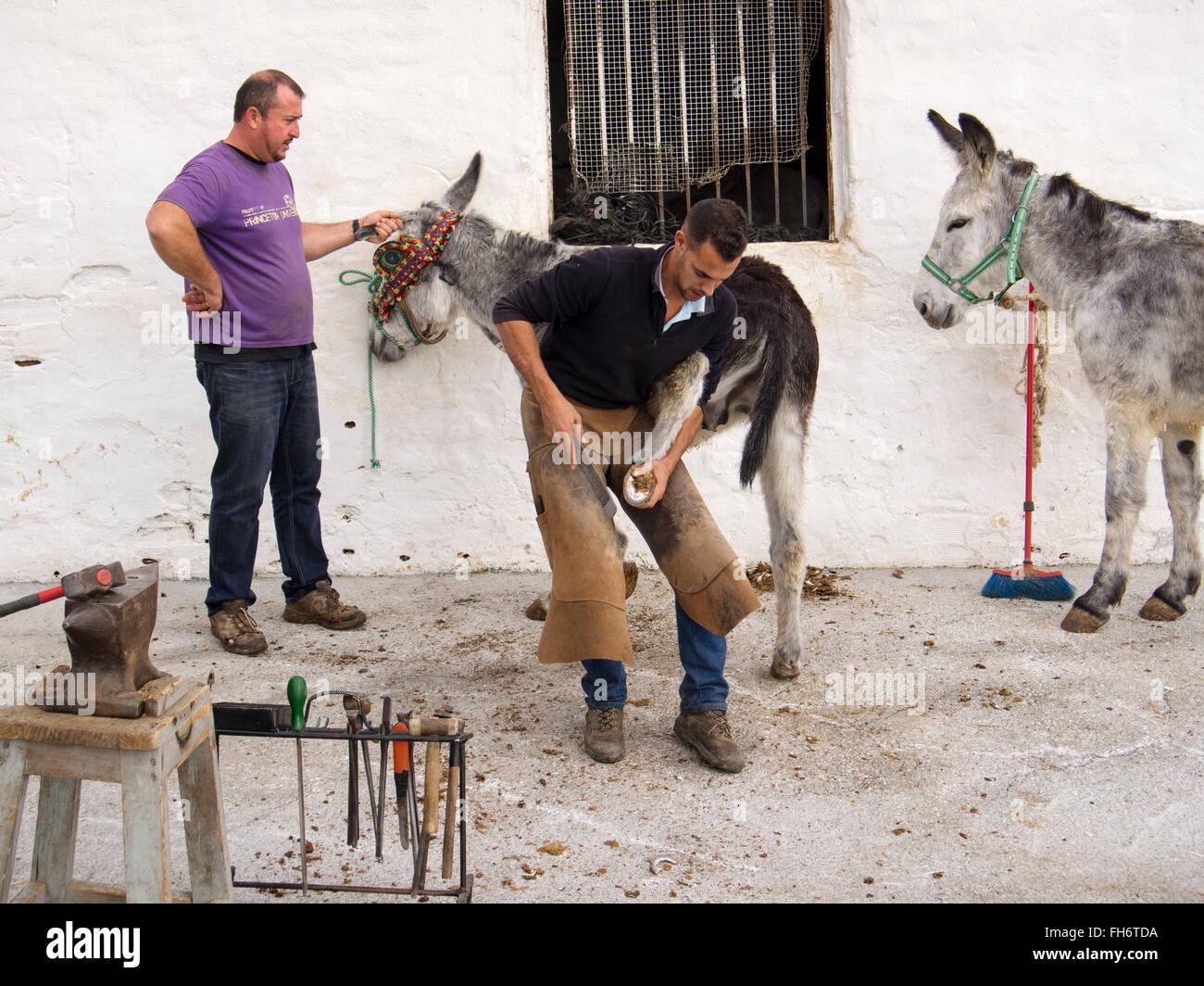 Clouage fers forgeron burro taxi âne typique village blanc, Mijas, Malaga province Costa del Sol. Le sud de Photo Stock