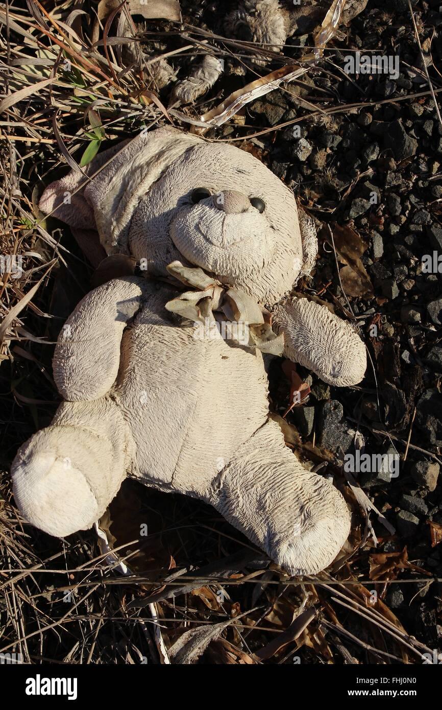 Enfant abandonné's toy ours sur terrain naturel Photo Stock