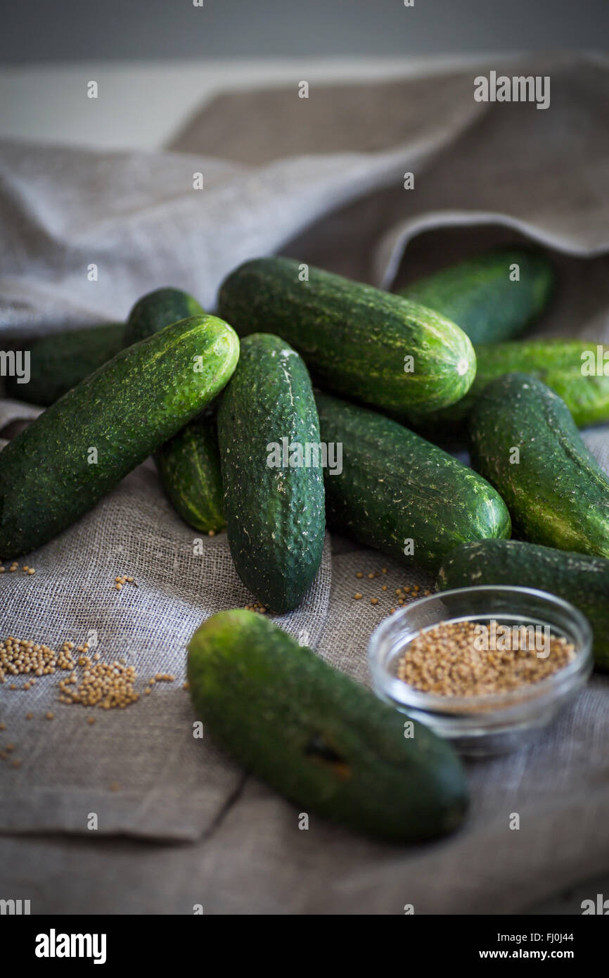 Des concombres et des graines de moutarde comme ingrédient pour les cornichons Photo Stock