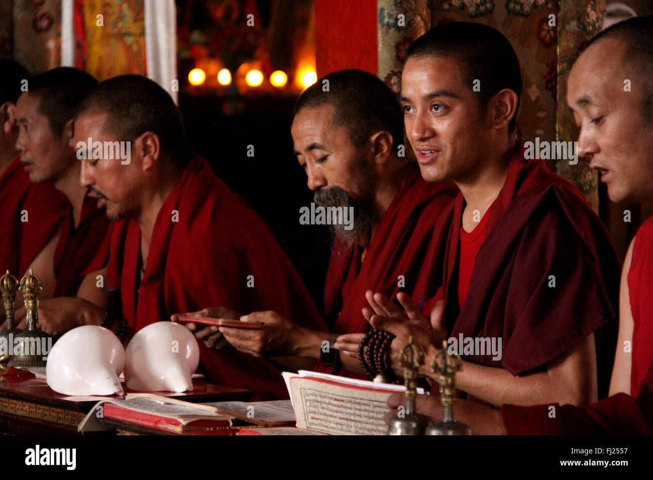 Portrait de moine bouddhiste au Népal Photo Stock