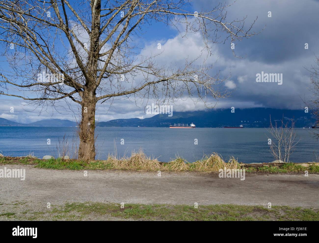 Sentier de marche, arbre, l'océan et les montagnes au parc par les banques espagnoles beach à Vancouver, C.-B. en Banque D'Images