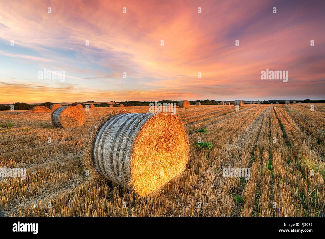 Magnifique coucher de soleil sur un champ de bottes de foin près de Newquay en Cornouailles Photo Stock