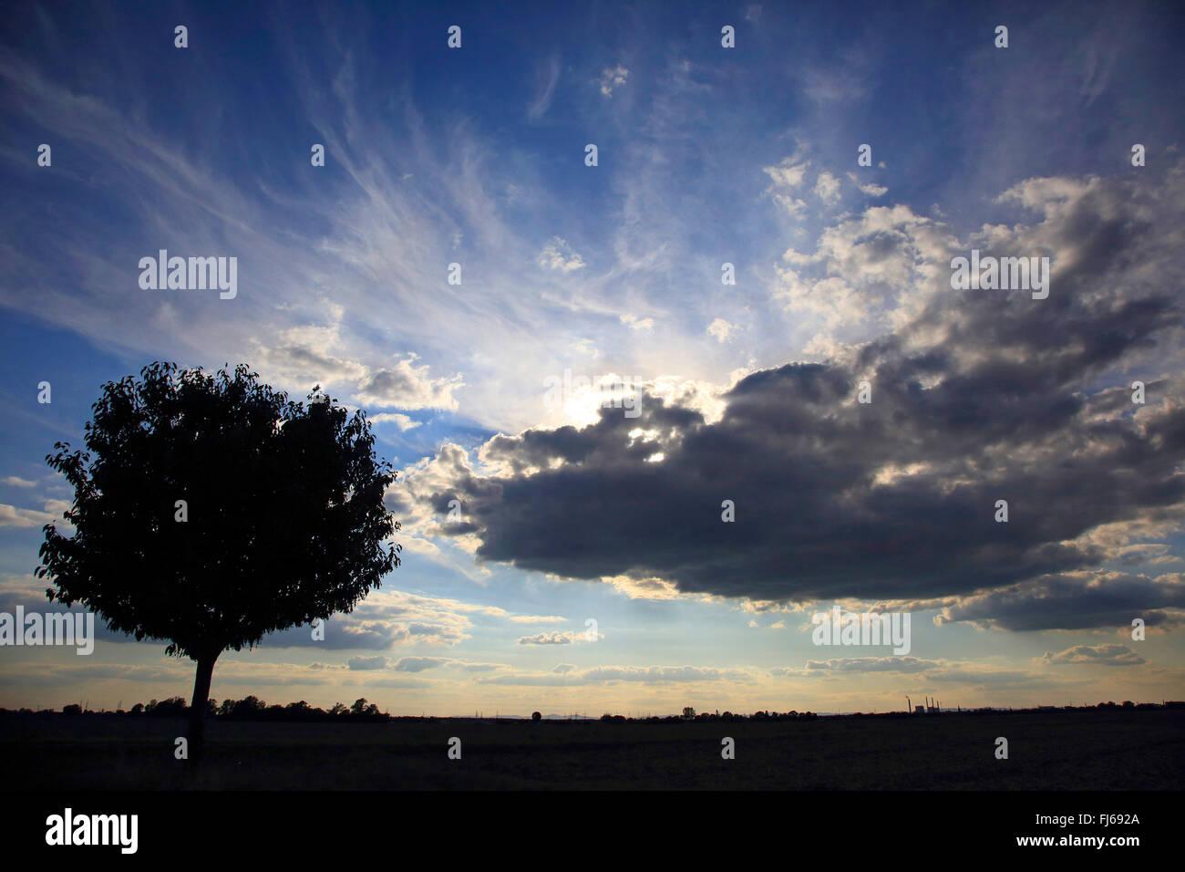 Domaine Le paysage et le soleil derrière les nuages sombres, Allemagne Photo Stock