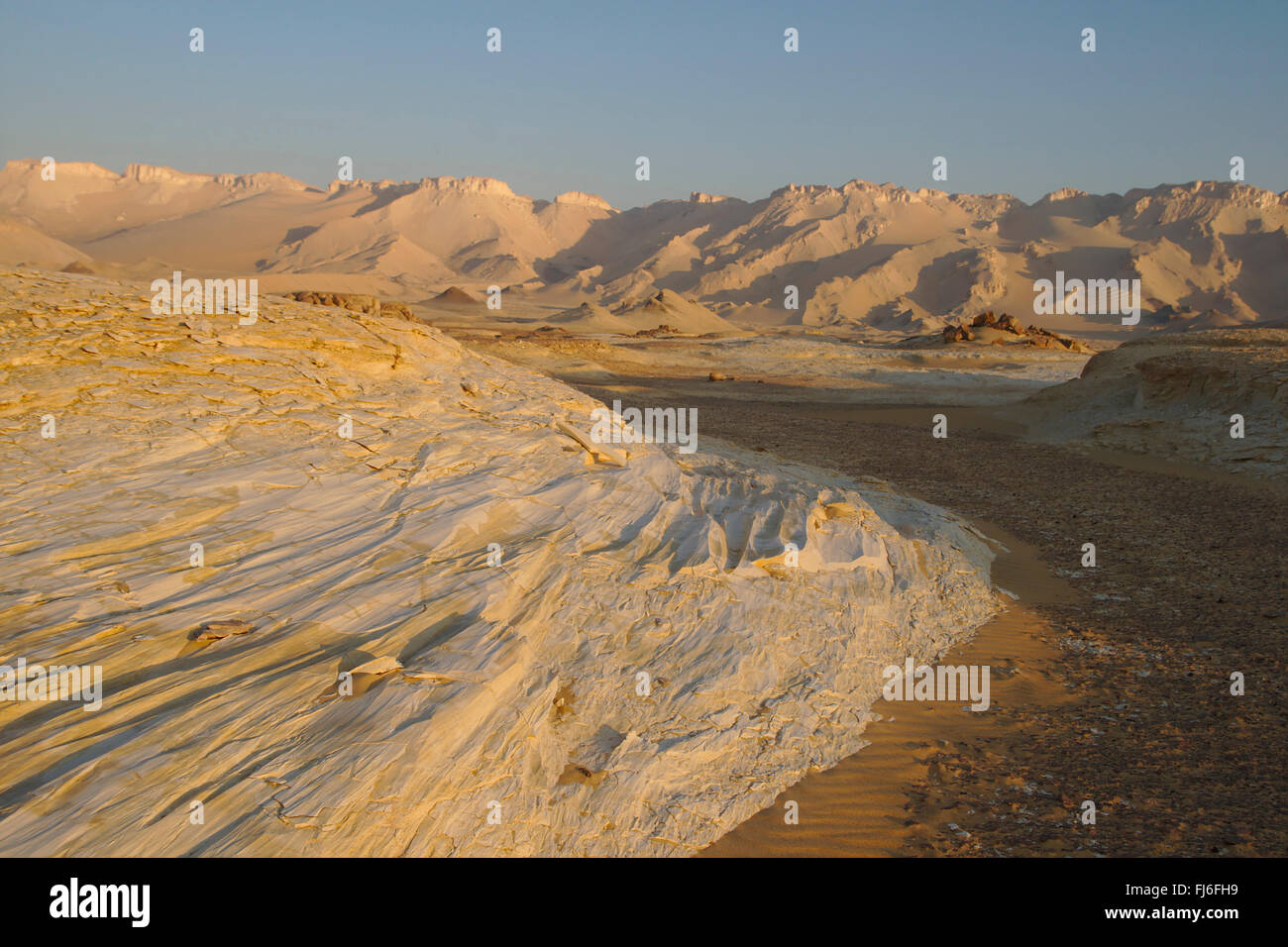 Corrasion éolienne sur calcaire, Dahkla, Egypt Banque D'Images