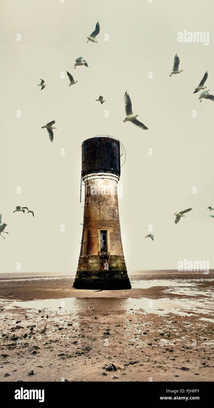 Vieux phare abandonné sur la plage et les mouettes Photo Stock