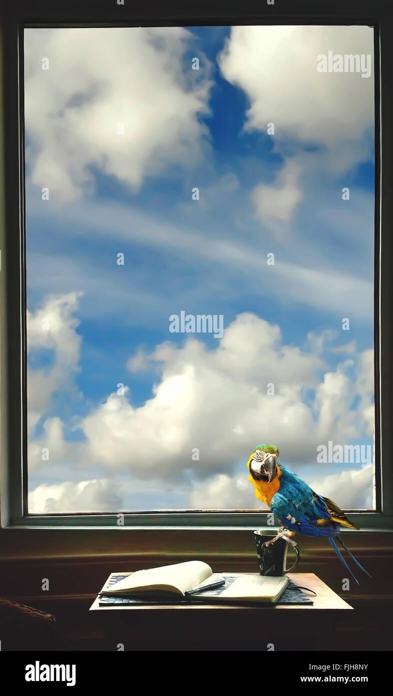 Prix de l'écrivain avec un ordinateur portable , stylo, tasse et perroquet sur la table par la fenêtre Photo Stock