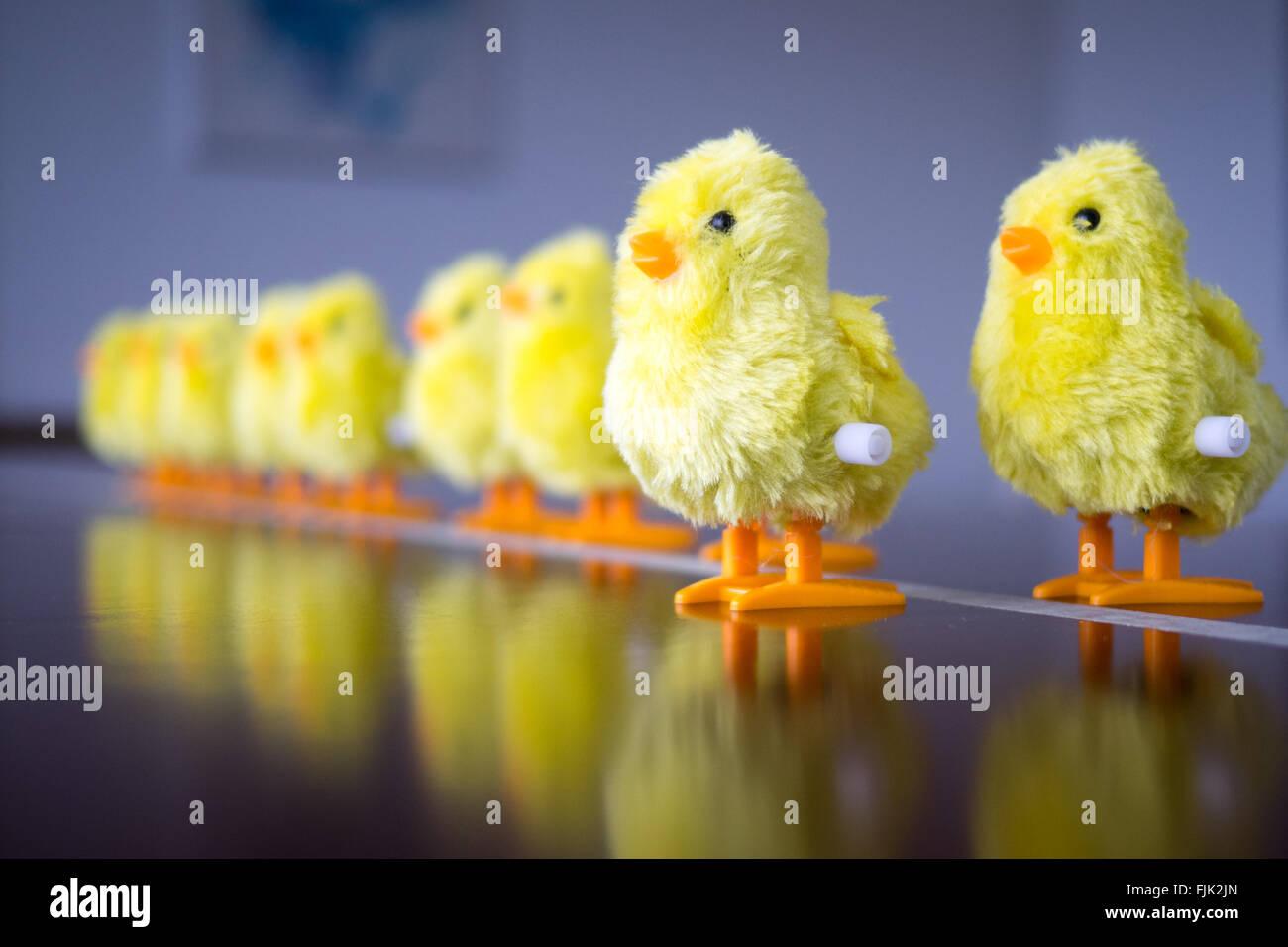 Un oisillon jouet. Concept: leadership, faire le premier pas, se démarquer de la foule. Photo Stock