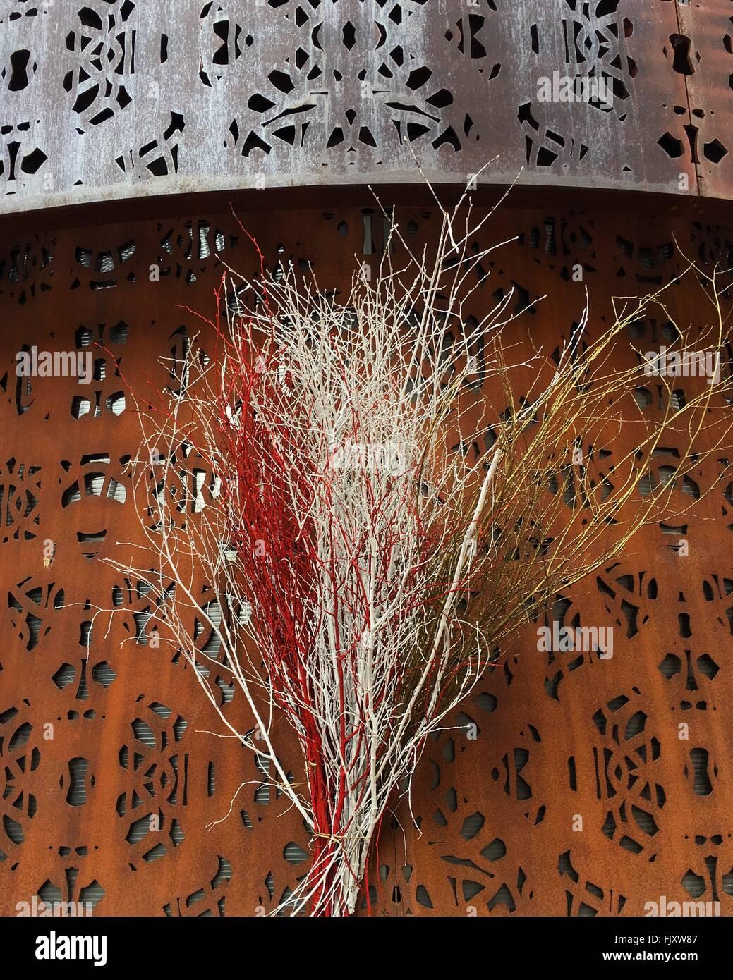 Branches dénudées contre mur à carreaux Photo Stock