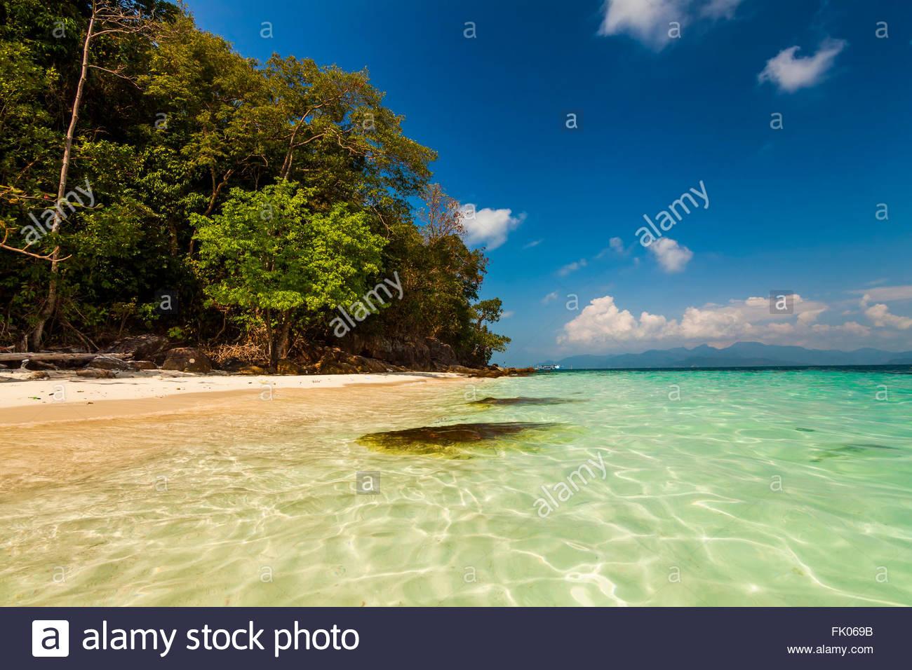 Tropical avec des cocotiers et plage de sable. Koh Chang. La Thaïlande. Photo Stock