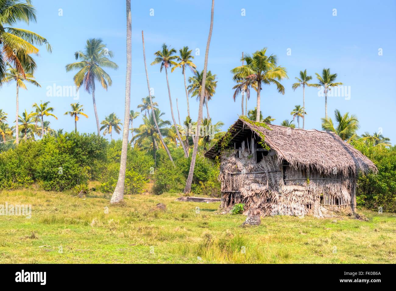 Une cabane dans la jungle de Kochi, Kerala, Inde, Asie Photo Stock