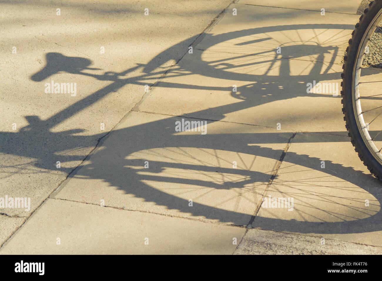 Ombre de vélo sur la chaussée Photo Stock