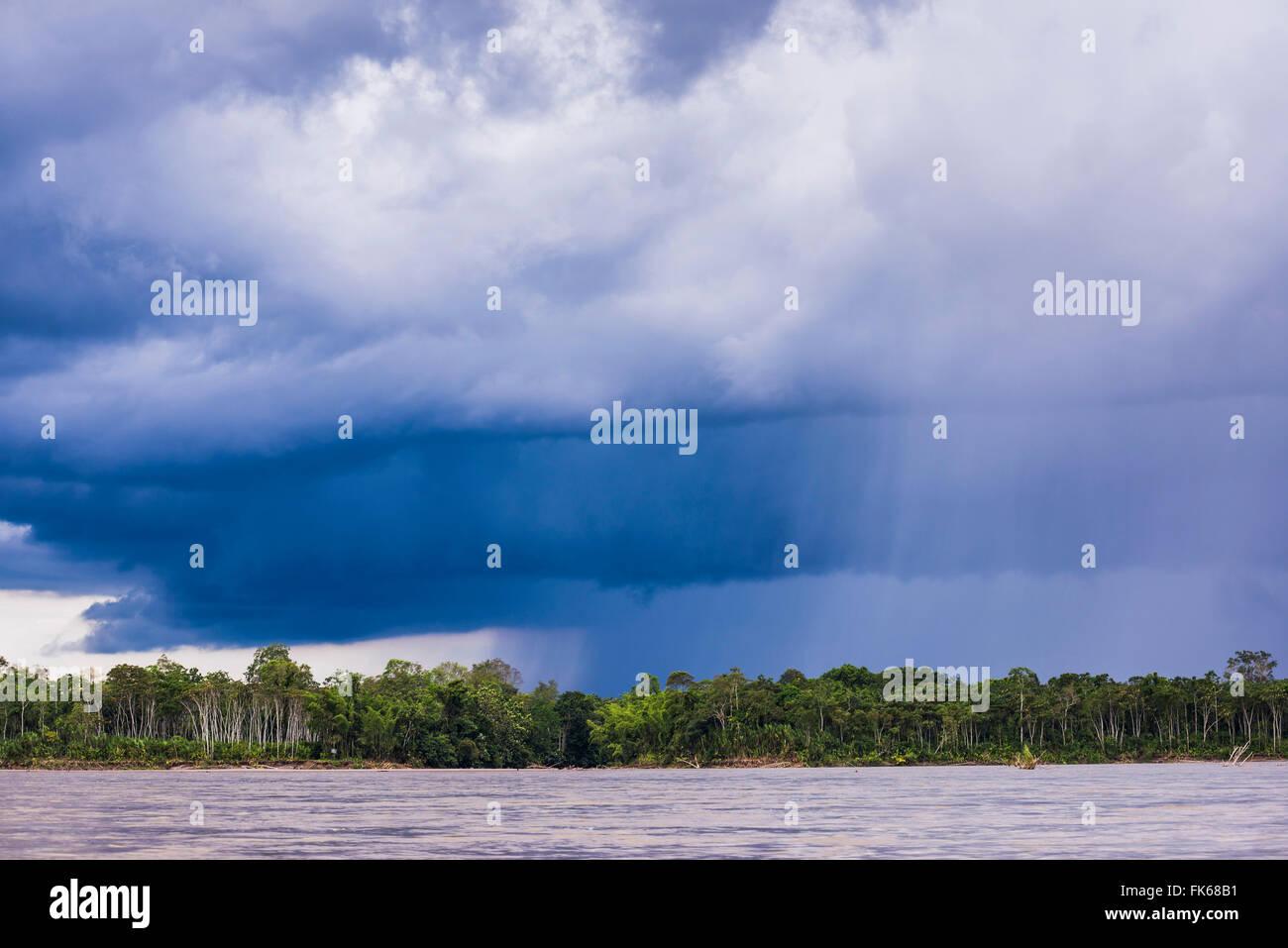 Amazon Rainforest tempête, Coca, Equateur, Amérique du Sud Photo Stock