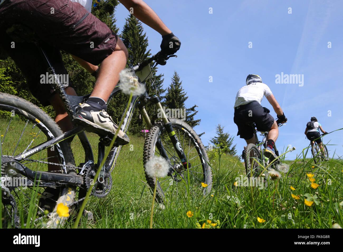 Dre dans le l'Darbon, course de VTT dans les Alpes, Haute Savoie, France, Europe Banque D'Images