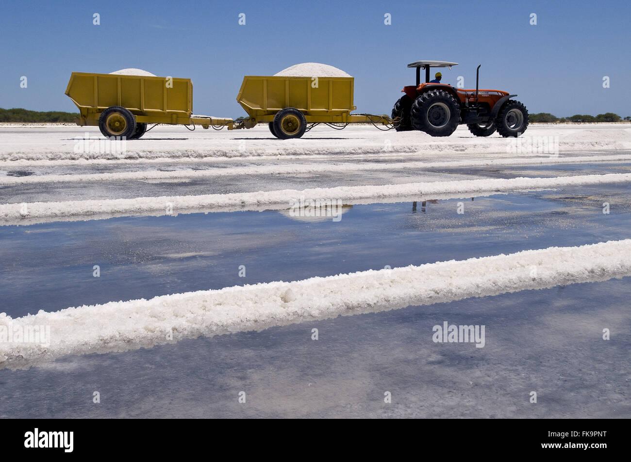 L'industrie du sel dans la côte du Natal - la région de la Costa Blanca Photo Stock