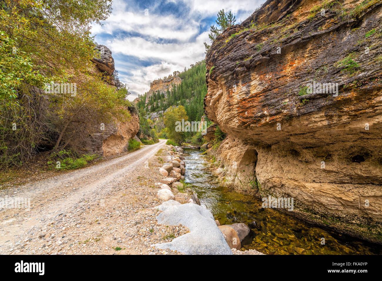 Route à travers Folle Canyon dans la Forêt Nationale De Bighorn près de Buffalo, Wyoming Photo Stock