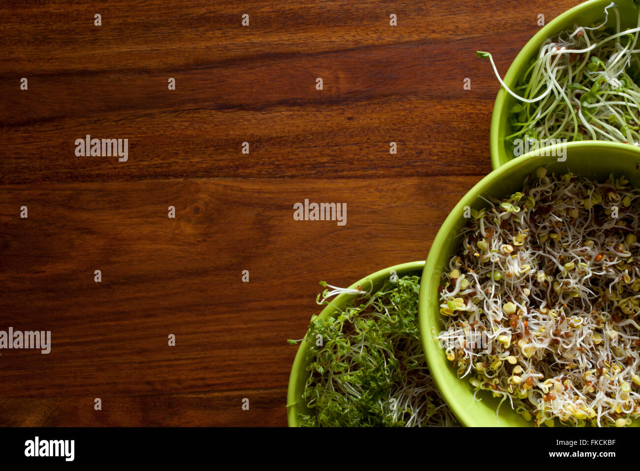 Les légumes verts frais et blanc Photo Stock