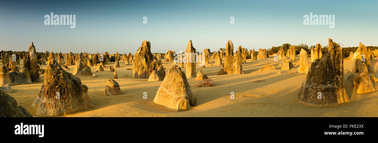 Les Pinnacles, des formations calcaires, le Parc National de Nambung, près de Cervantes, l'ouest de l'Australie Photo Stock