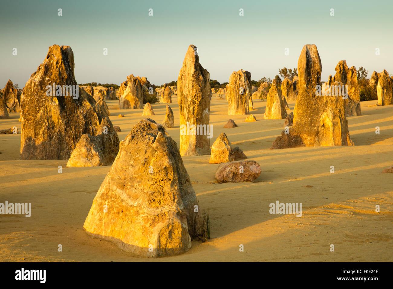Les Pinnacles, des formations calcaires, le Parc National de Nambung, près de Cervantes, l'ouest de l'Australie Photo Stock