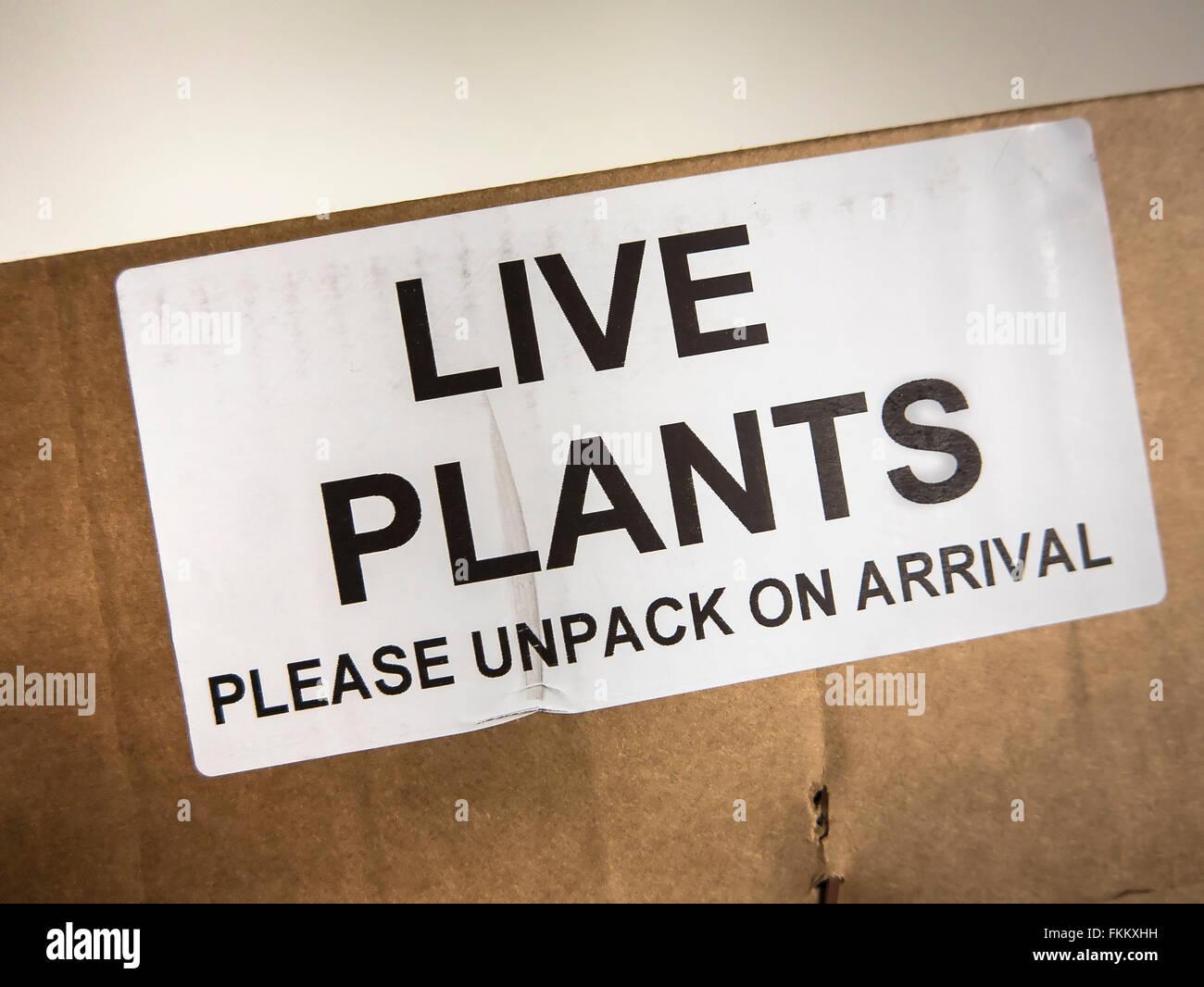 Étiquette de boîte contenant des plantes en direct et au Royaume-Uni Photo Stock