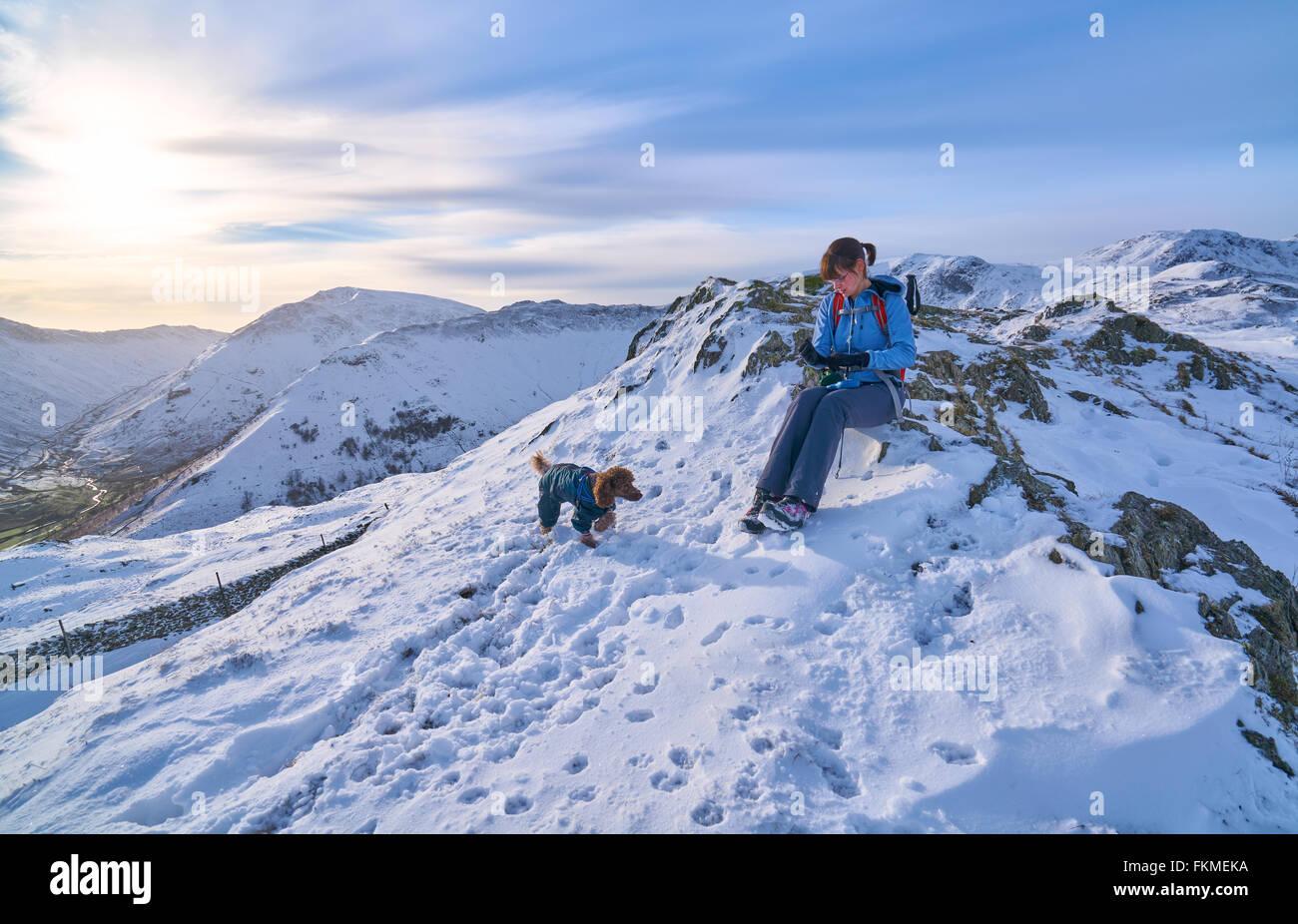 Le temps de repos pour un randonneur et leur chien en Hartsop au-dessus de la façon qui mène à la falaise Hart Lake District. Banque D'Images