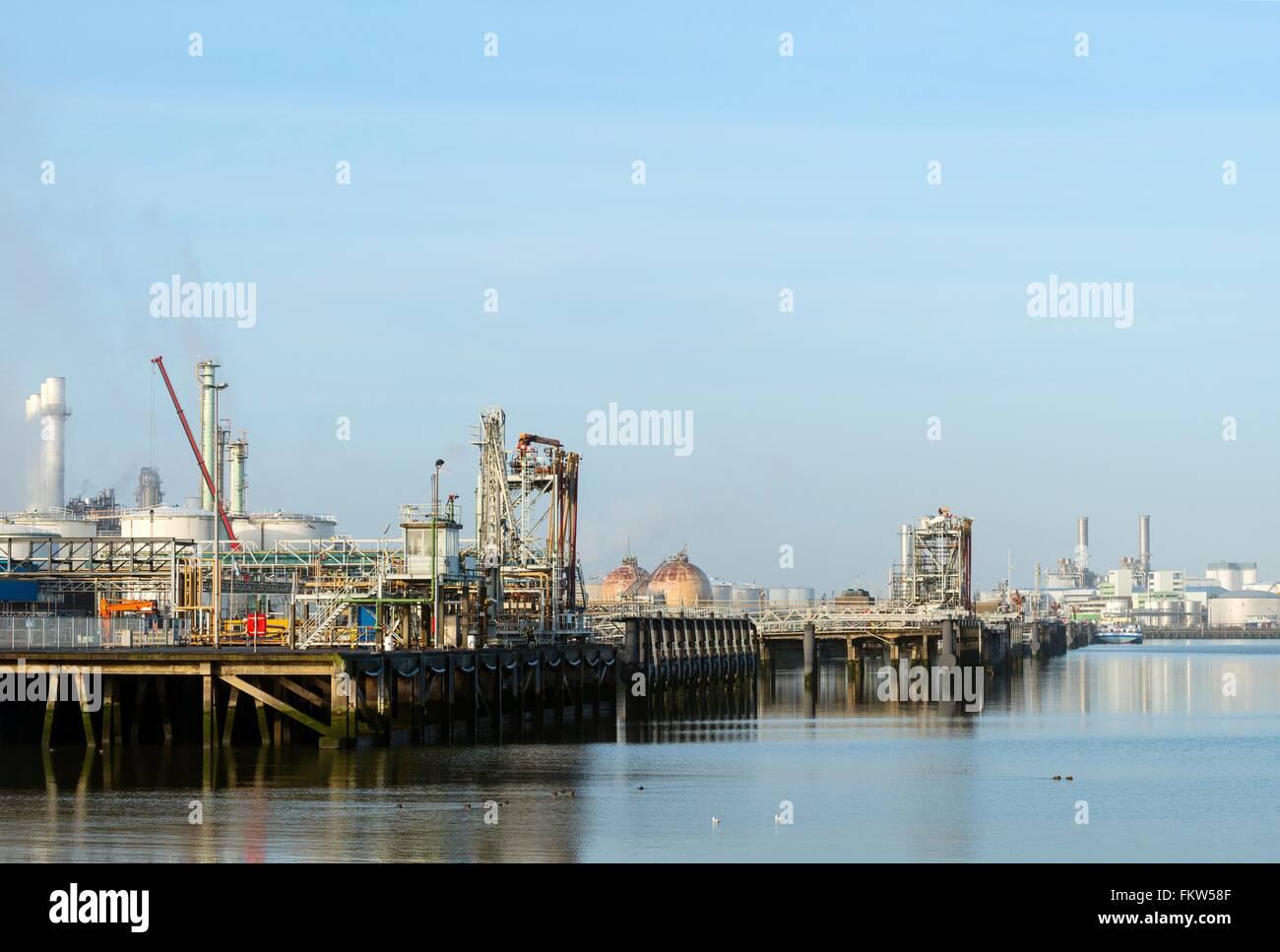 Port avec la borne d'huile à la raffinerie, Rotterdam, Zuid-Holland, Pays-Bas Banque D'Images