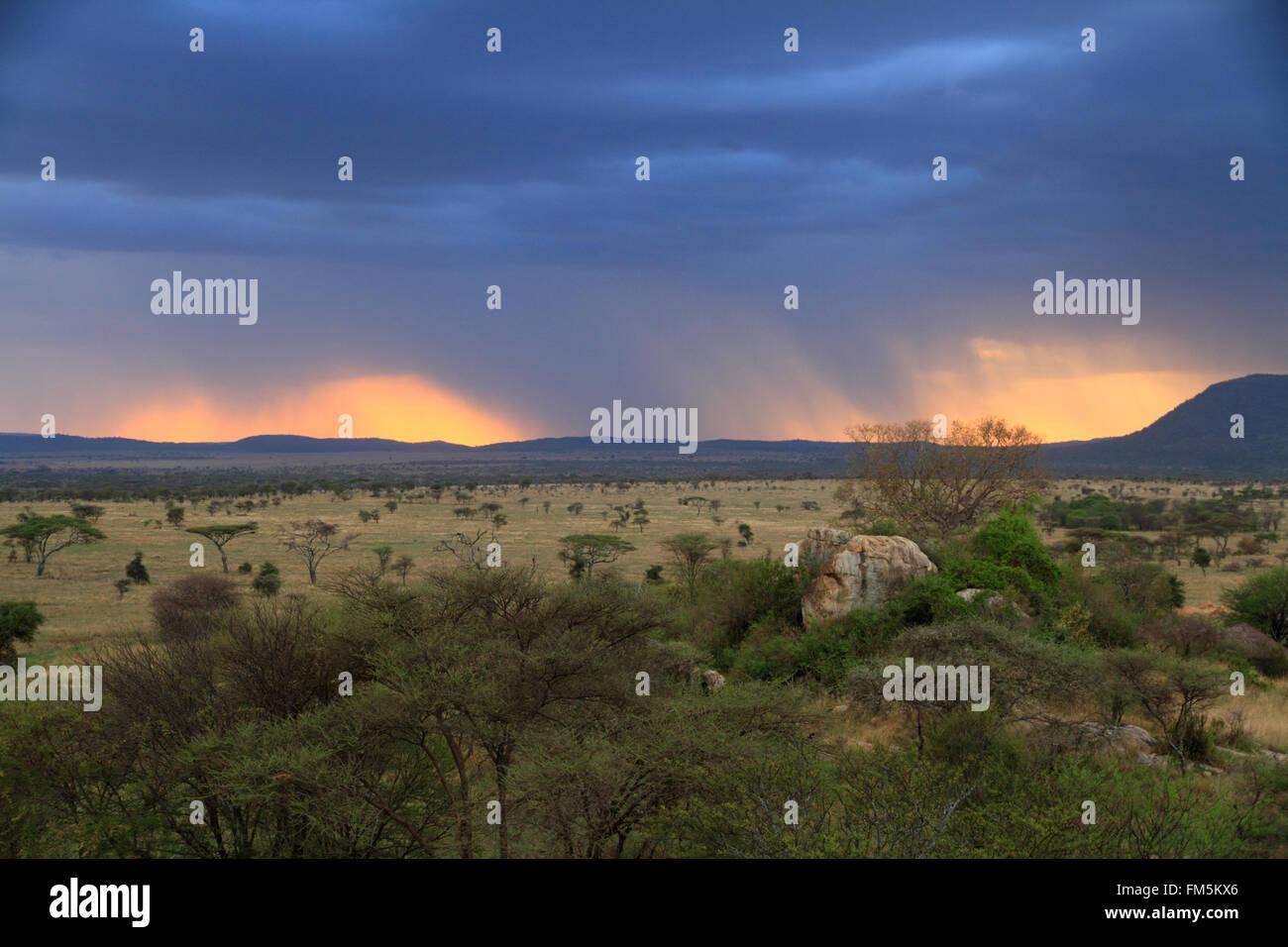 Un coucher de soleil à travers des nuages de pluie sur la savane africaine Photo Stock