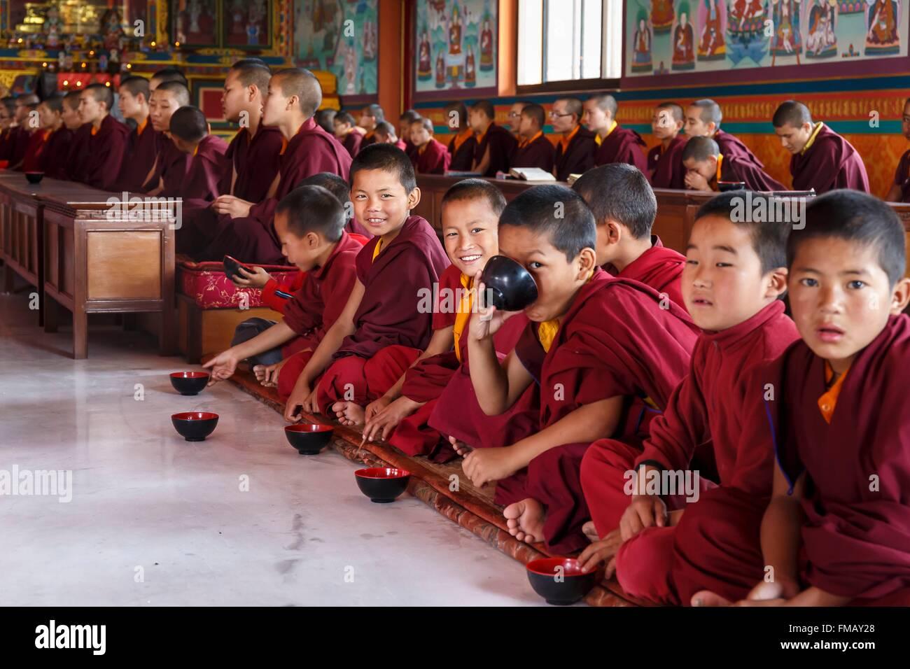 Le Népal, zone Bagmati, Nala, jeunes moines boire du lait café au monastère bouddhiste Dhagpo Sheydrub Photo Stock