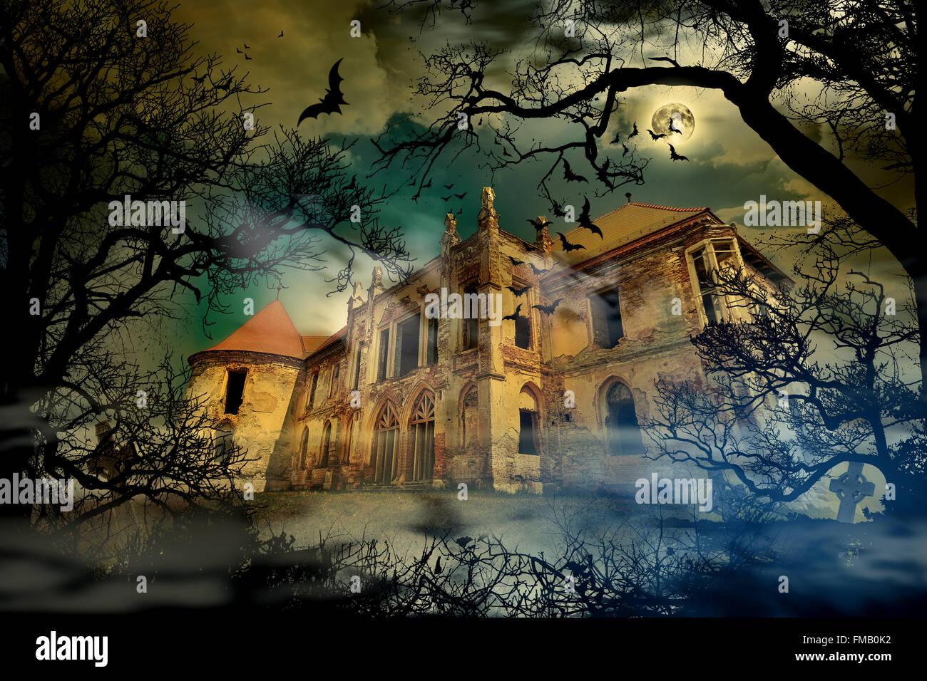 Château hanté en fond brumeux avec des silhouettes d'arbres. Photo Stock