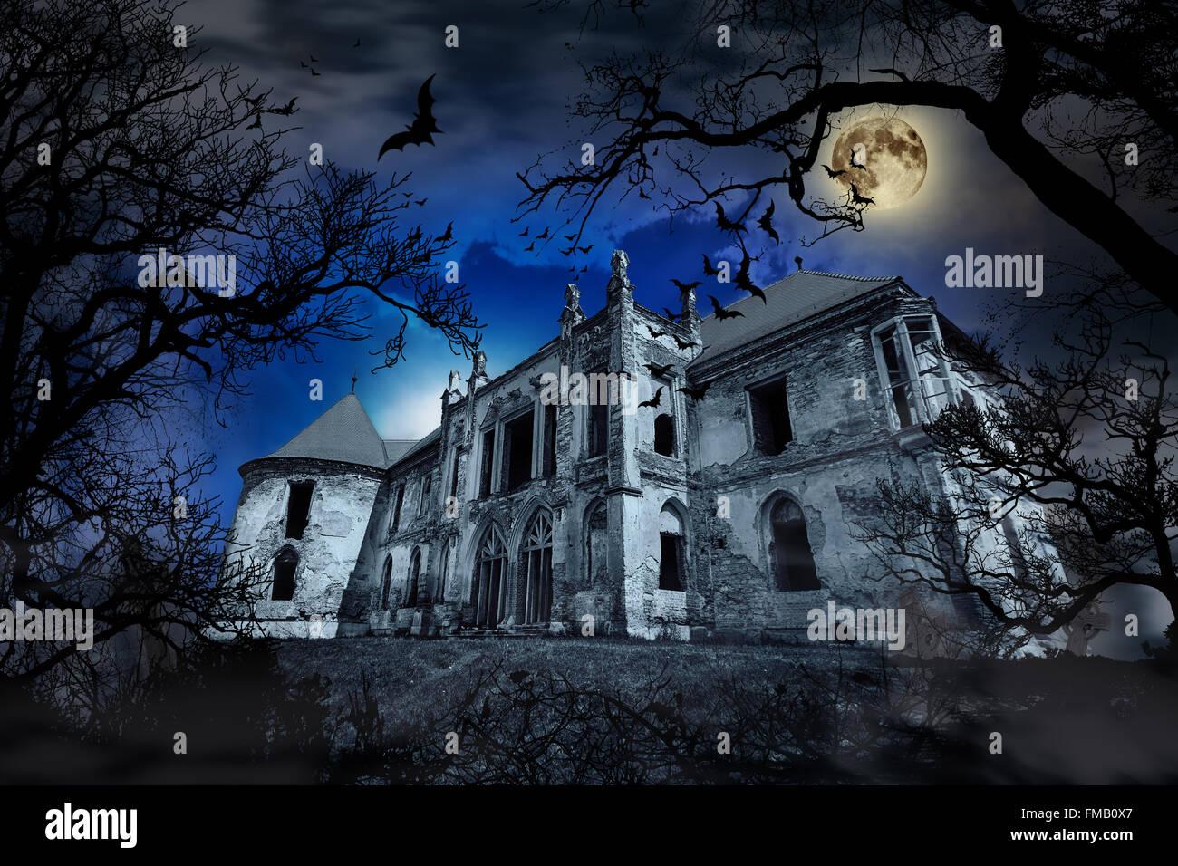 Maison hantée en fond brumeux avec des silhouettes d'arbres. Photo Stock