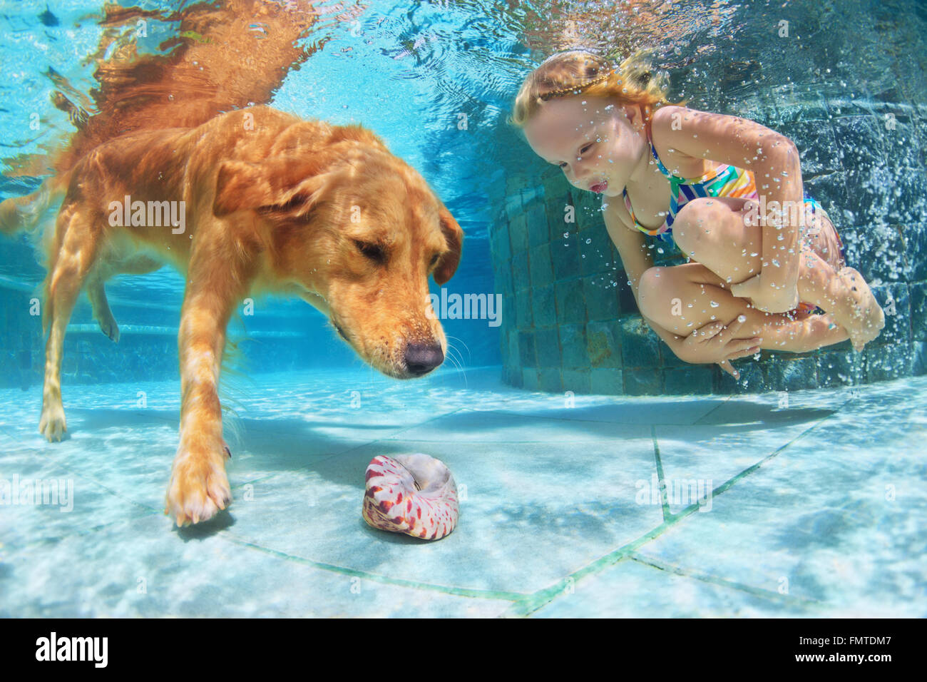Enfant jouer avec plaisir et le train golden labrador retriever chiot de la piscine - sauter et plonger sous l'eau Photo Stock