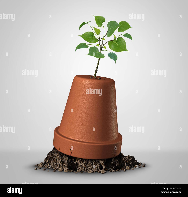 Jamais espoir concept de persistance et la force irrésistible de la nature comme un jeune arbre émergeant Photo Stock
