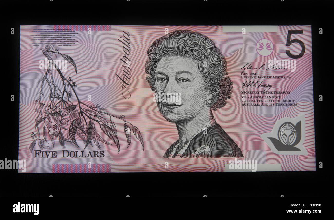 L'avant d'un Australien cinq dollar bank note Photo Stock