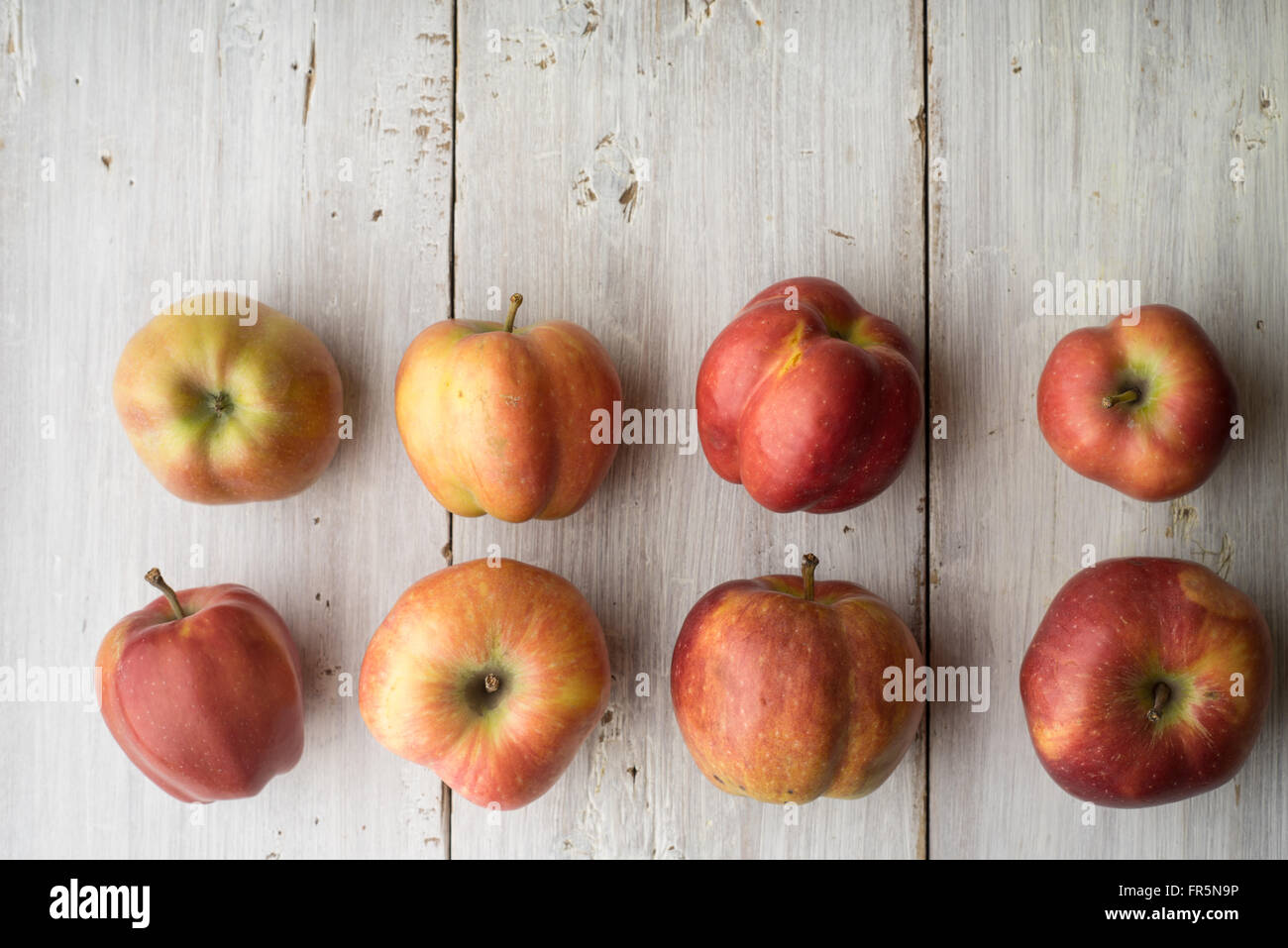 Des pommes sur une table horizontale, en bois blanc Photo Stock