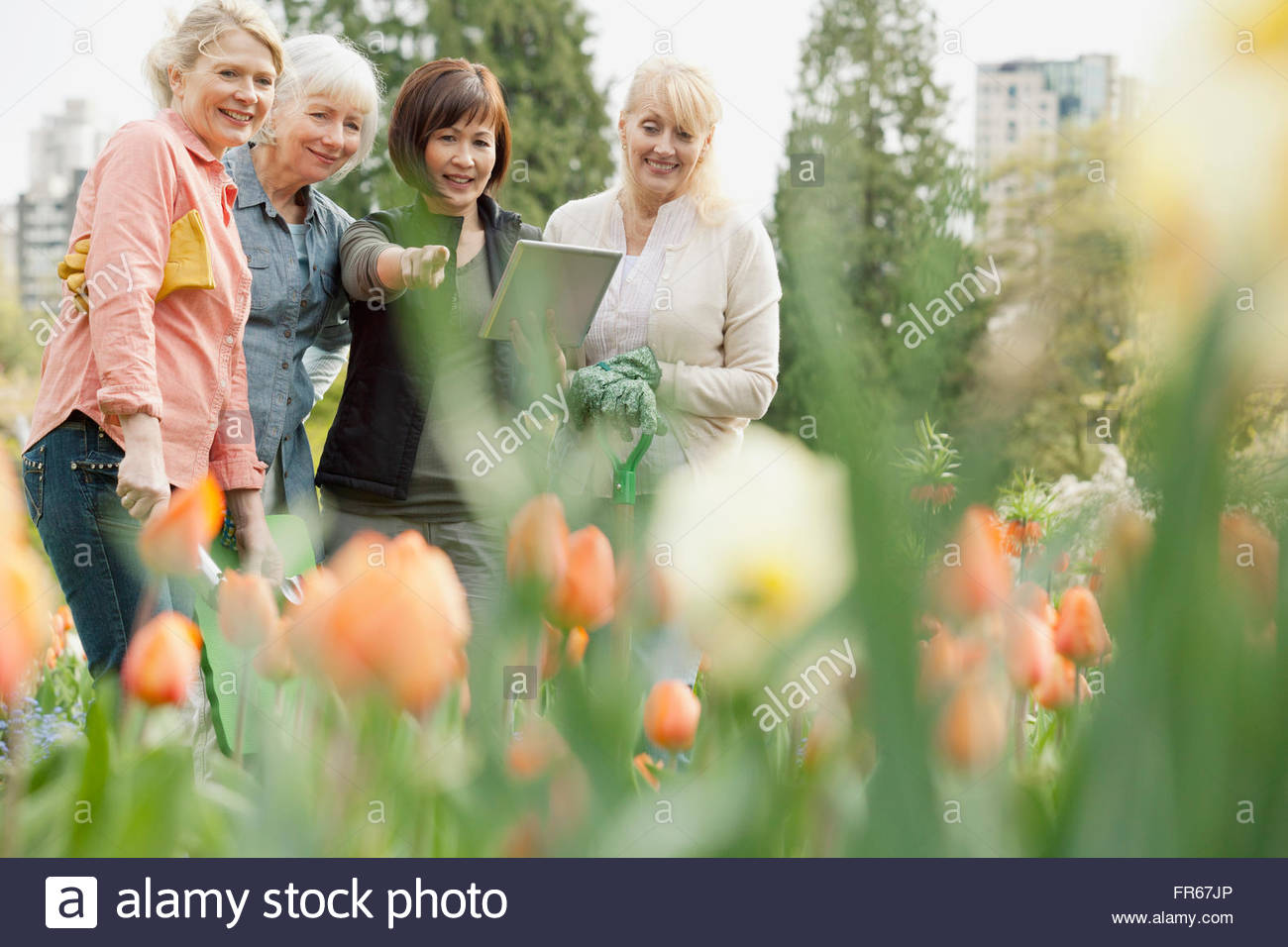 Discuter des plans d'aménagement paysager femme Photo Stock
