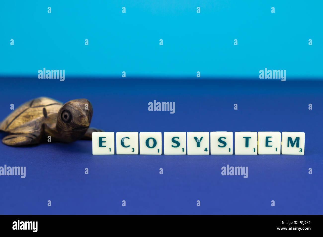 Tortue en bois avec signe de l'écosystème sur fond bleu Photo Stock