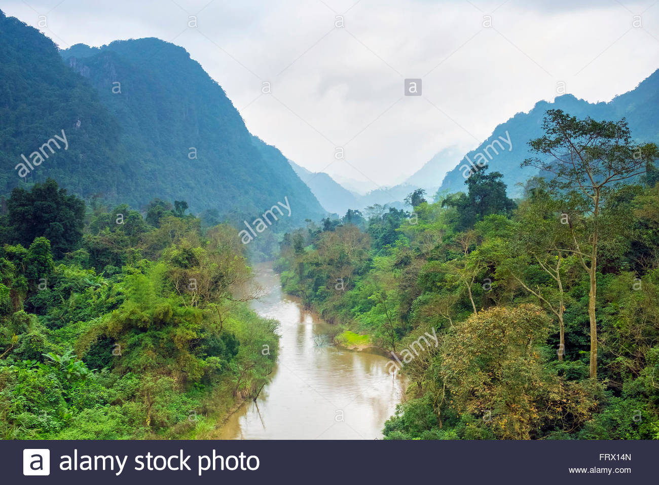 Paysage de la jungle dans le parc national de Phong Nha-Ke Bang, district de Bo Trach, Province de Quang Binh, Vietnam Photo Stock