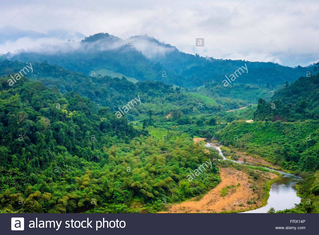Paysage de la jungle le long de la route d'Ho Chi Minh à l'Ouest, District de Quang Ninh, Vietnam, Photo Stock