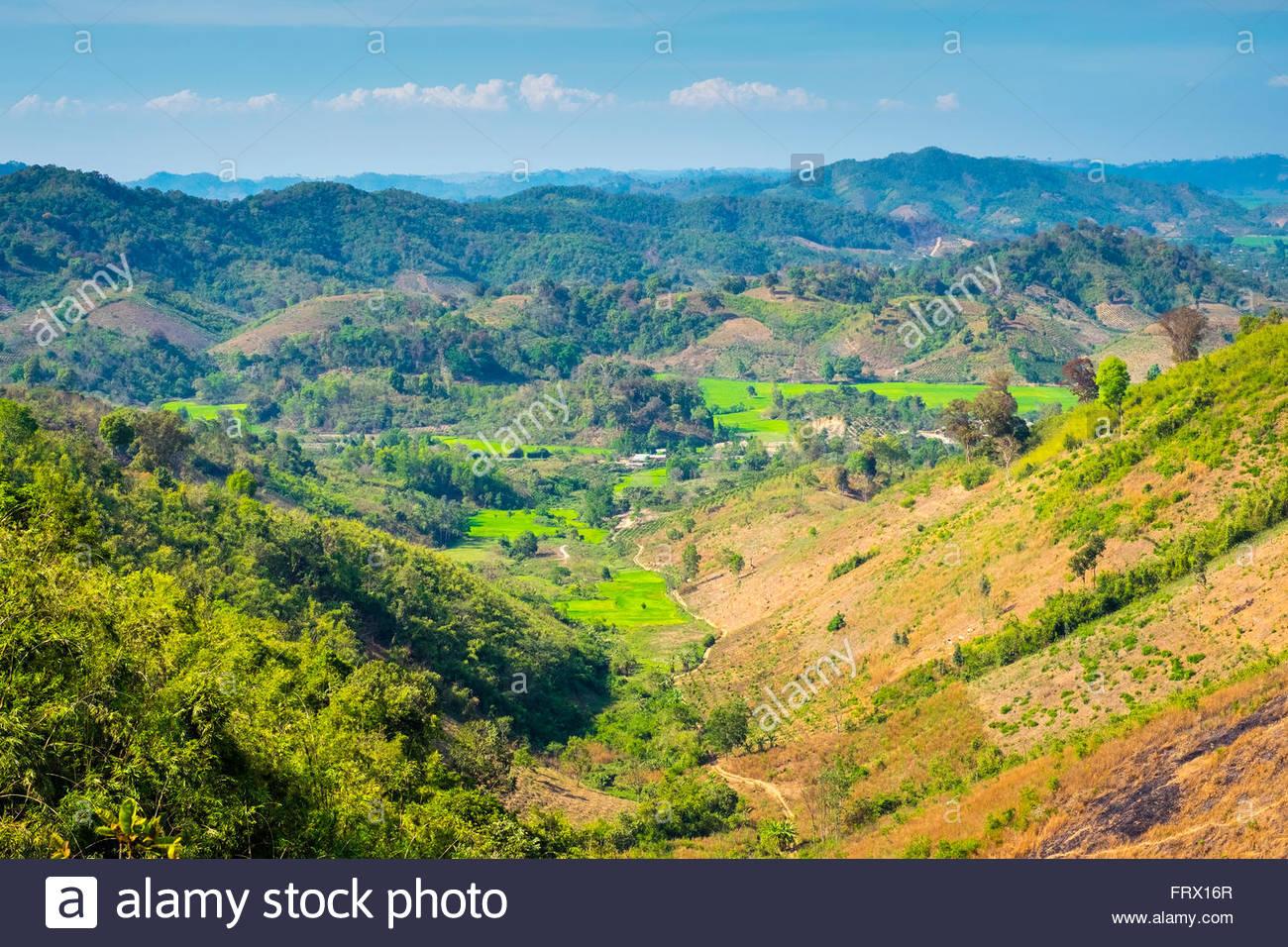 Hauts Plateaux du centre du paysage, province de Dak Lak, Vietnam Photo Stock