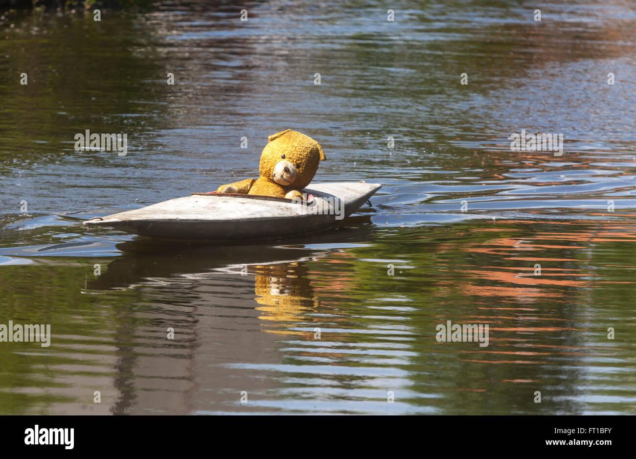 Ours glissant le long river kayak, rivière Nezarka, République Tchèque Photo Stock