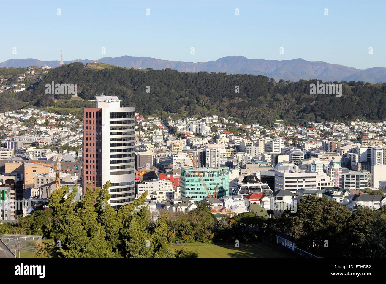 La ville de Wellington, Nouvelle-Zélande Photo Stock