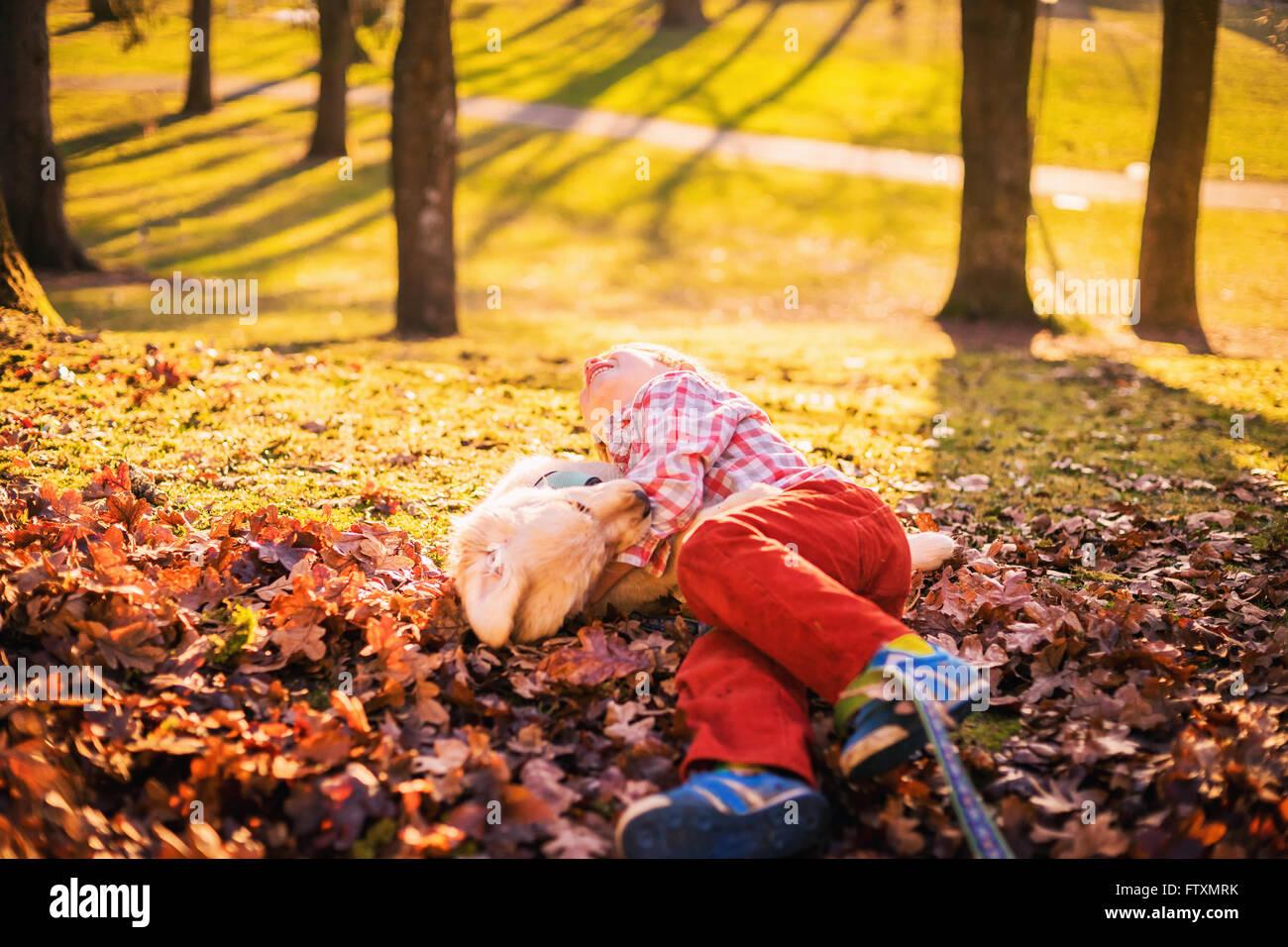Garçon rouler dans les feuilles d'automne avec chiot golden retriever dog Photo Stock