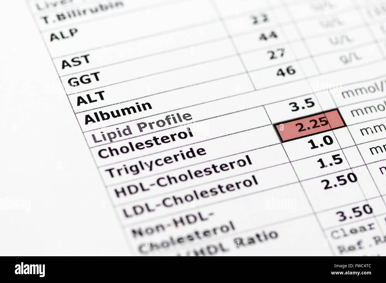 Rapport de la chimie du sang normal montrant des tests de la fonction hépatique, et un profil lipidique, avec Photo Stock