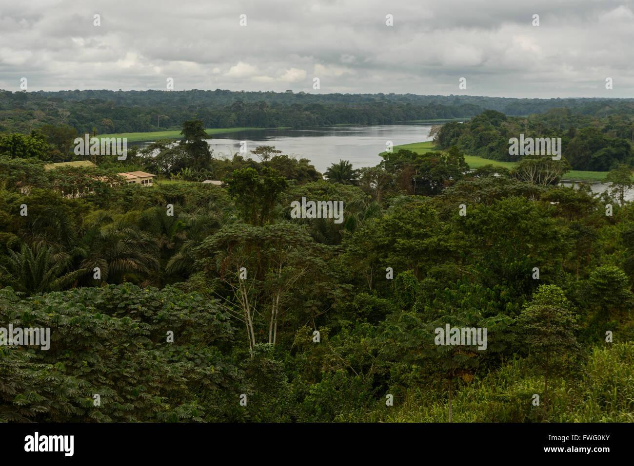 Les rivières de la forêt tropicale, le Gabon, l'Afrique Centrale Banque D'Images