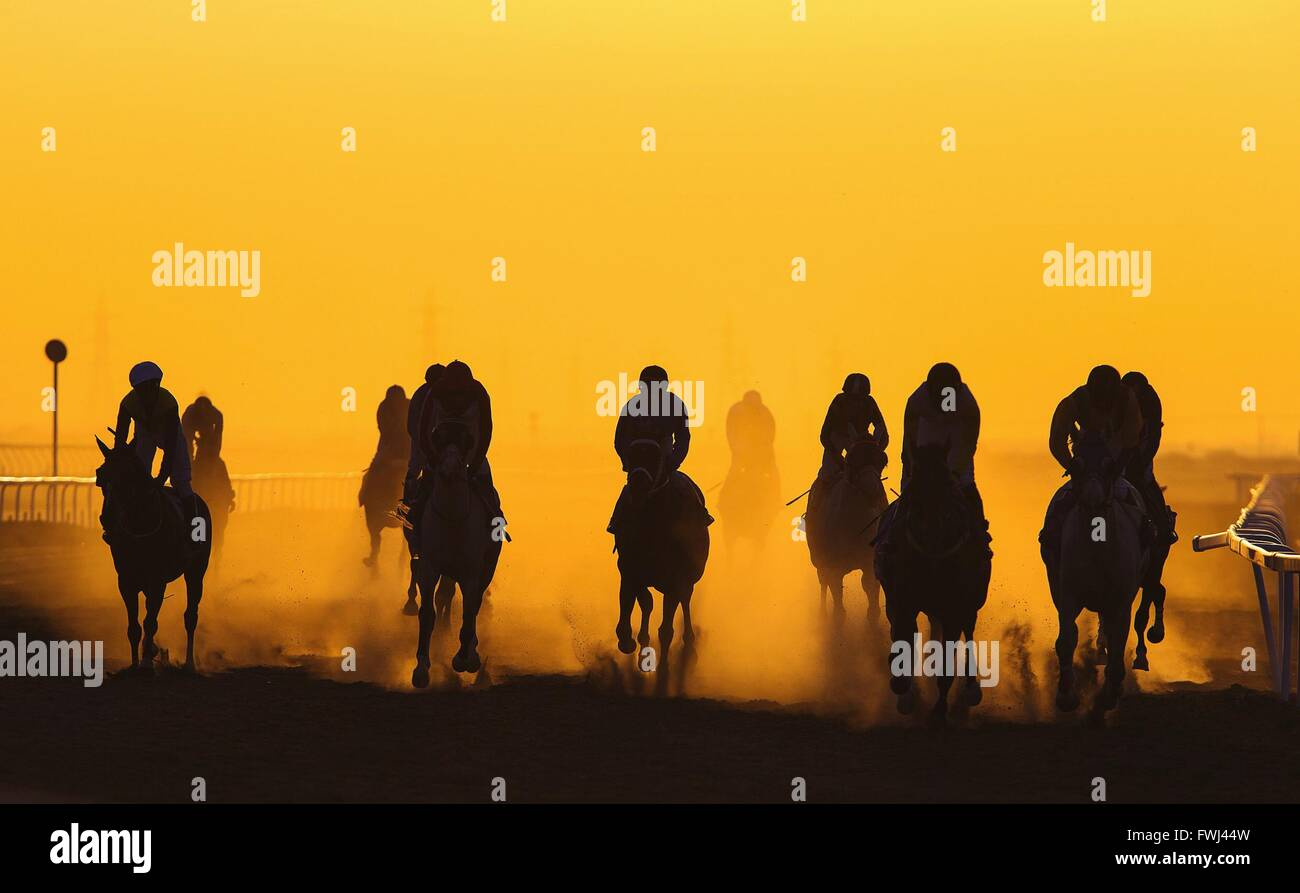 Les courses de chevaux contre Orange Ciel clair Photo Stock