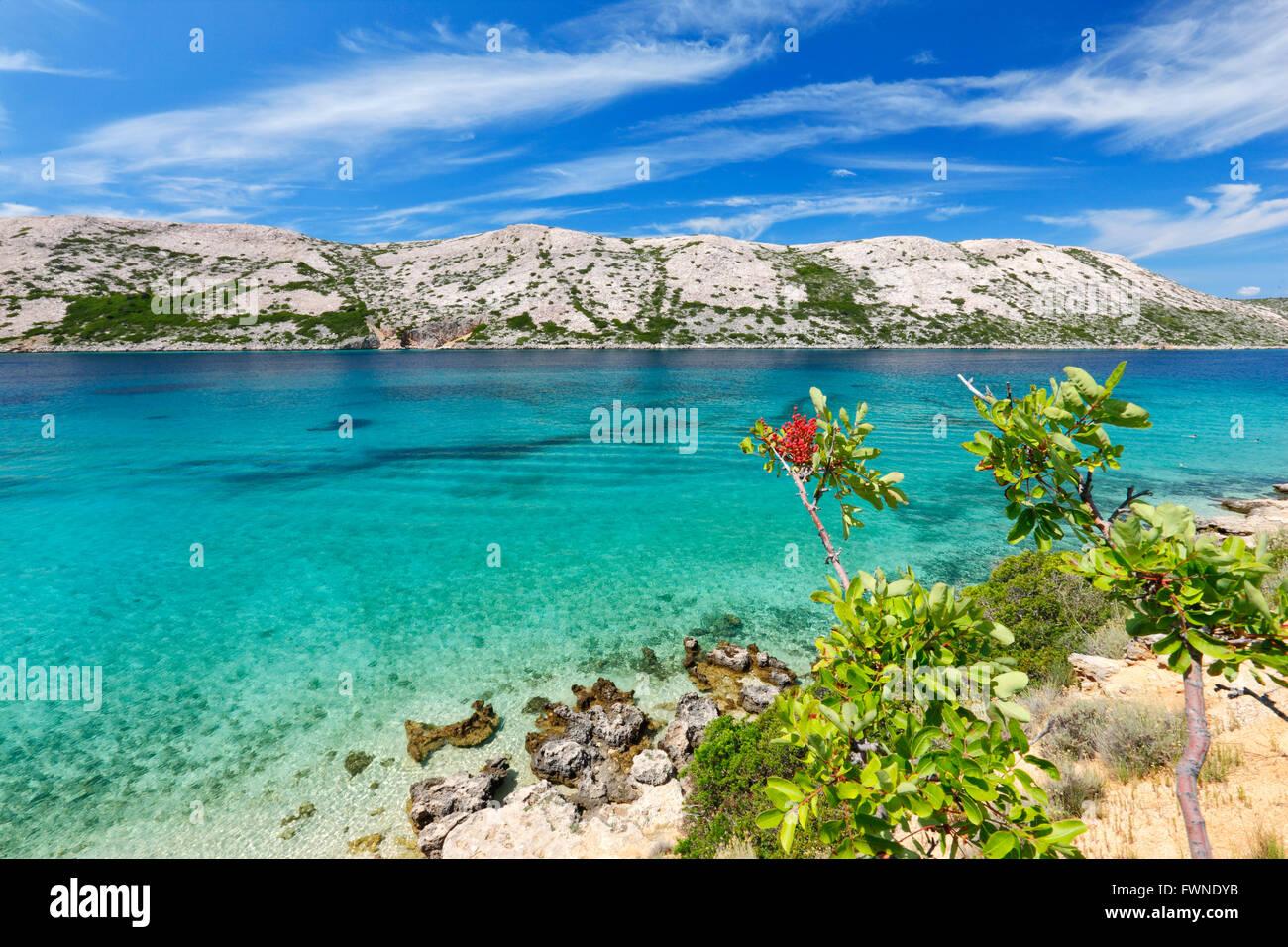 Nature Paysage de l'île de Rab en Croatie Photo Stock