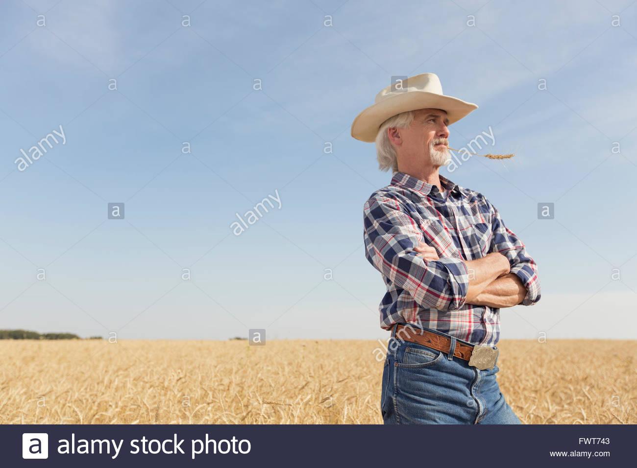 Senior man looking out au champ de blé. Photo Stock