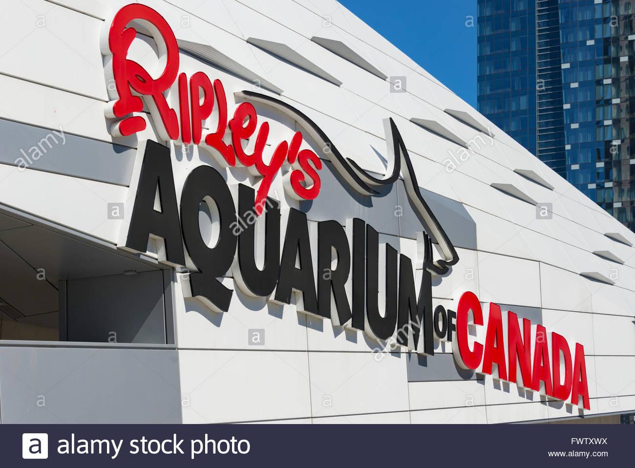L'entrée de l'Aquarium Ripley's: la visite d'enfants le plus pour ses fins récréatives Photo Stock