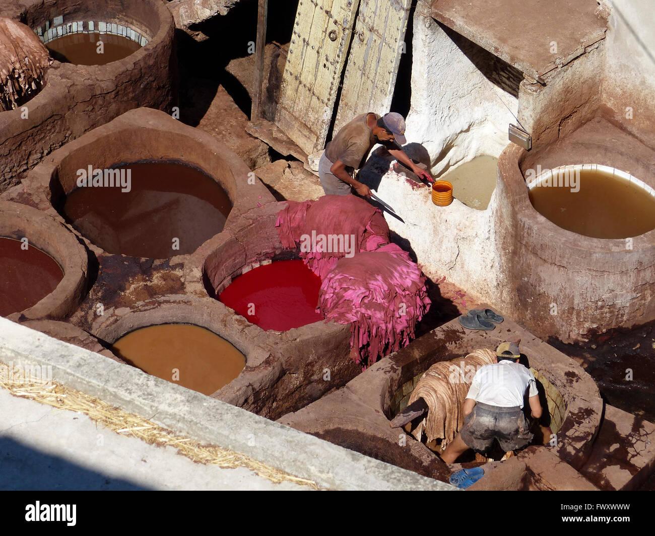 Maroc, Fès, industrie du cuir d'une tannerie Photo Stock