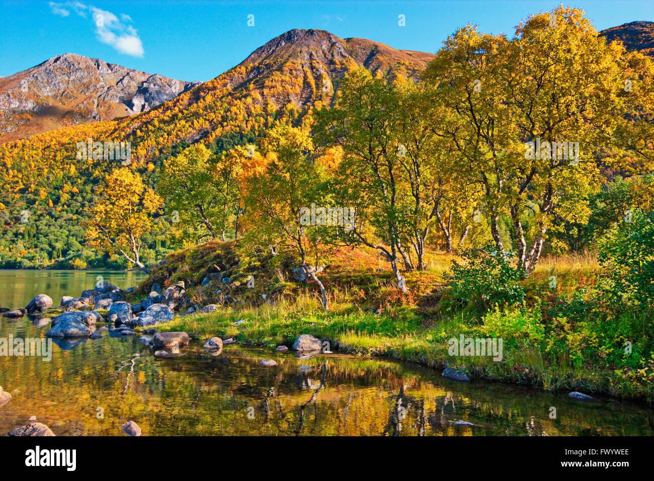 Austerfjorden Revsves Hinnøya près de sur l'île du nord de la Norvège sur une belle journée d'automne. Banque D'Images